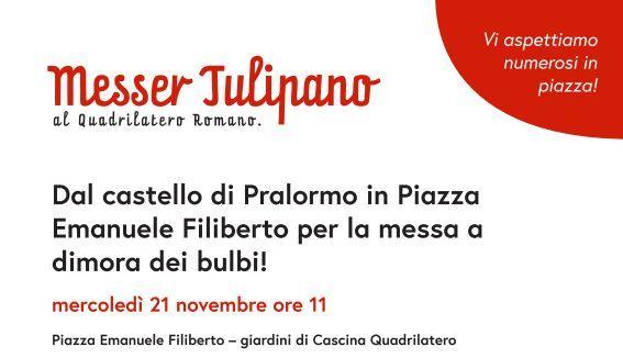 Tulipani Piazza Emanuele Filiberto